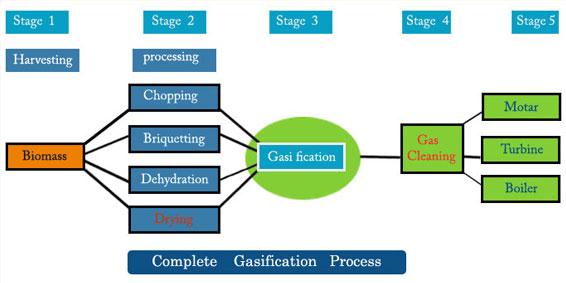 Biomass Flow Chart Rebellions